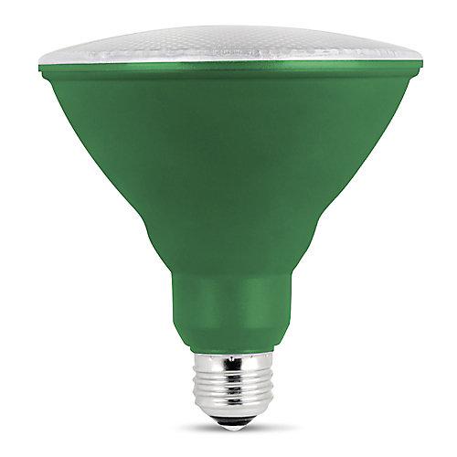 Ampoule DEL à lumière pour croissance de plantes PAR38 Spectre Complet Blanc Doux Équivalente à 75W