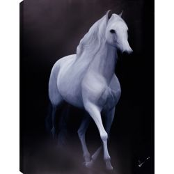 Art Maison Canada 40x50 WHITE HORSE, Acrylic Painting on Canvas, Ready to Hang
