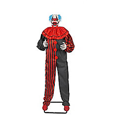 Clown animé, 72 po