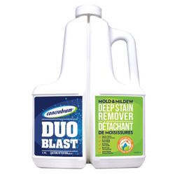 Concrobium Duo Blast Mold & Mildew Deep Stain Remover