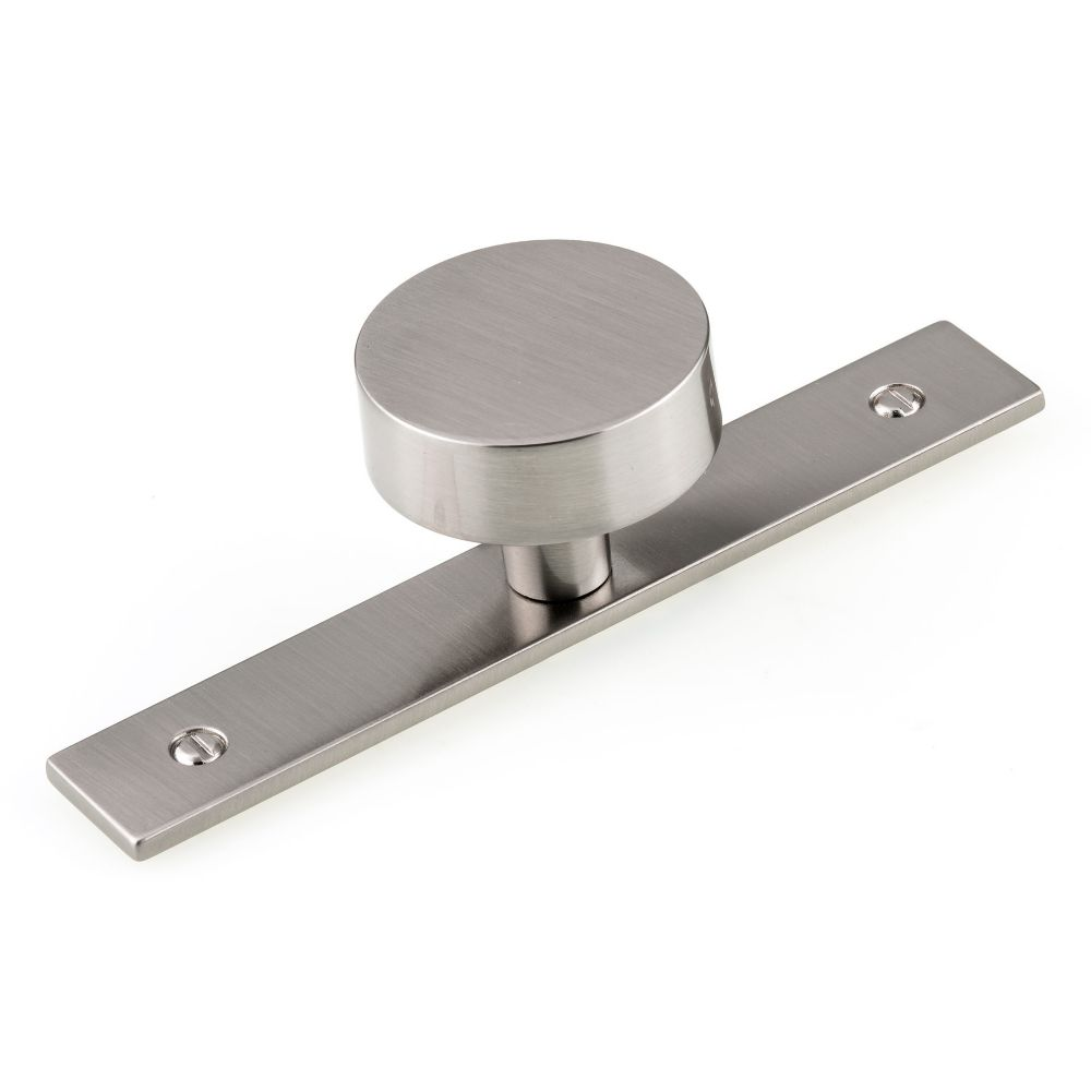 Richelieu Hardware Contemporary Metal Wardrobe Knob and Backplate