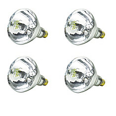 Incandescent 250W BR40 Heat Lamp Clear - Case of 4 Bulbs