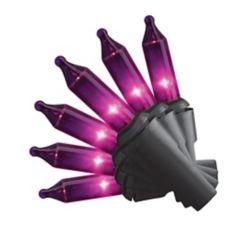 HAL 100-Light Purple Mini Halloween Lights