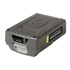20 Volt · 2.0 Ah EcoSharp LITE Lithium-Ion Battery