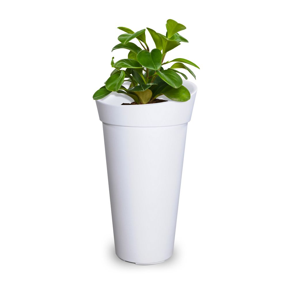 Mayne Creston Planter - White