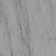 Carrara White 18-inch x 18-inch Polished Marble Floor and Wall Tile (11.25 sq. ft. / case)