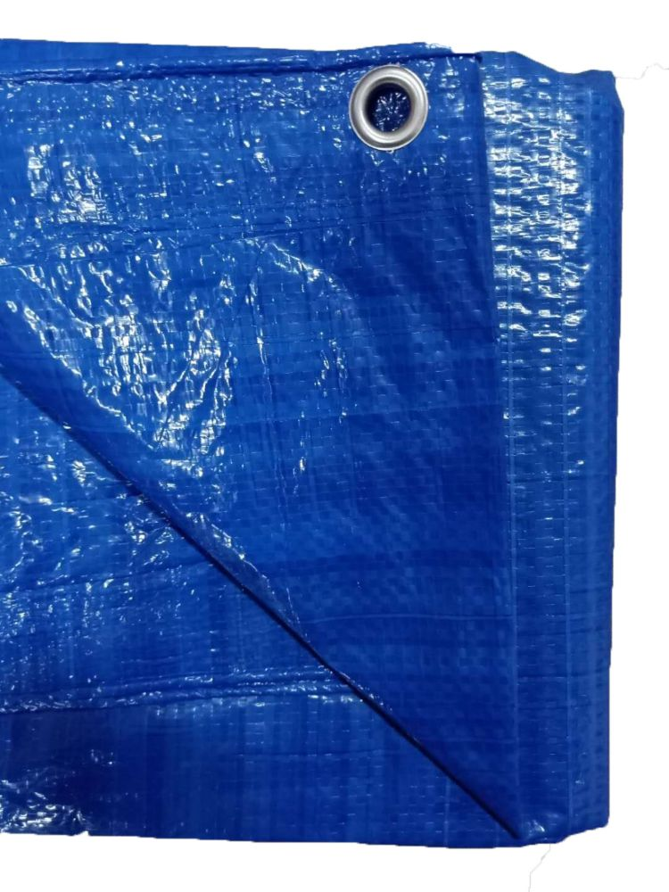 GENERIC 2 PK Blue light duty  tarp 12 ft.x14 ft.