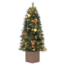 Home Accents Holiday Arbre de Noël Arctic Flurry en pot de 4 pi pré-illuminé, avec 70 ampoules à DEL blanc chaud