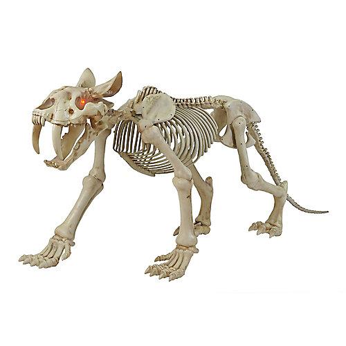 72-inch Long LED-Lit Skeleton Sabretooth Tiger Halloween Decoration