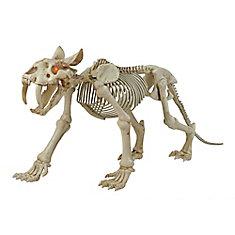 Squelette de tigre à dents de sabre d'Halloween à DEL, longueur de 72 po