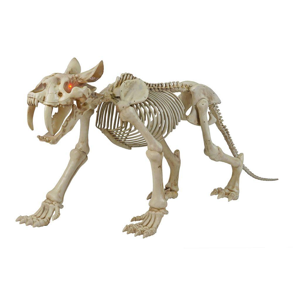 Home Accents Halloween 72-inch Long LED-Lit Skeleton Sabretooth Tiger Halloween Decoration