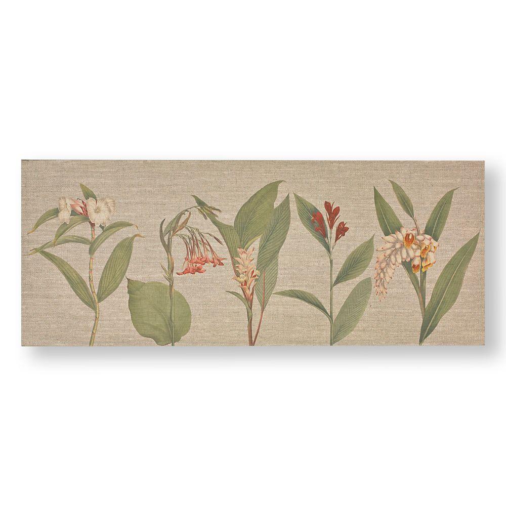 Graham & Brown Botanical Bliss Printed Canvas Wall Art