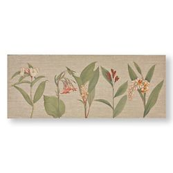 Graham & Brown Botanical Bliss Printed Canvas Wall Art