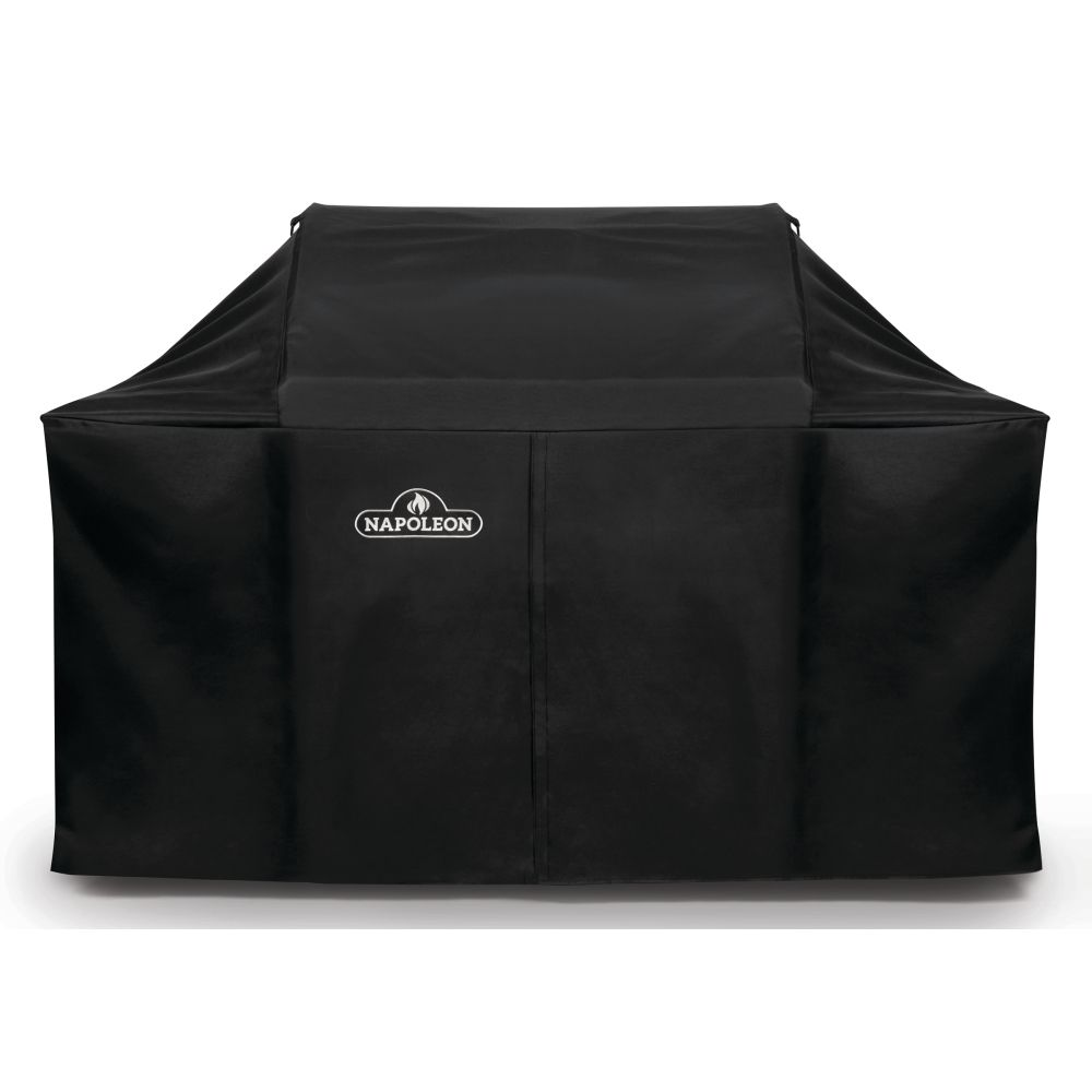 Napoleon LEX 605 and Charcoal Professional Grill Cover