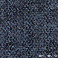 Scotia Whale Modular Carpet Tile (21.53 sq. ft. /case)