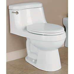 Icera USA The Palermo 1-Piece Toilet Elongated Bowl Shape (In Balsa)