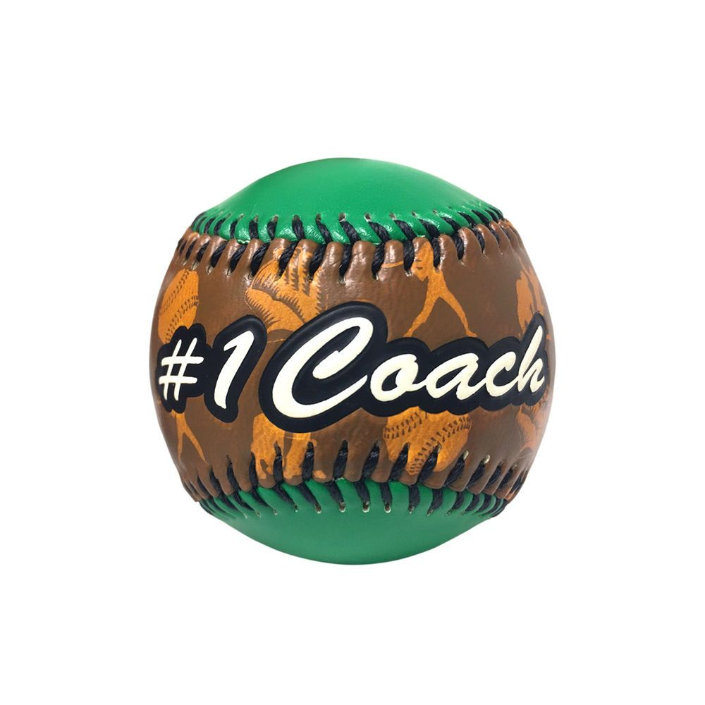 THD Coach Baseball in Acrylic Cube