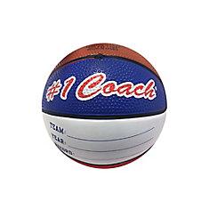 Coach Mini Basketball