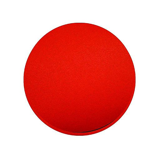Diablo 6-7/8 inch 100-Grit Sanding Disc for Floor Sanders