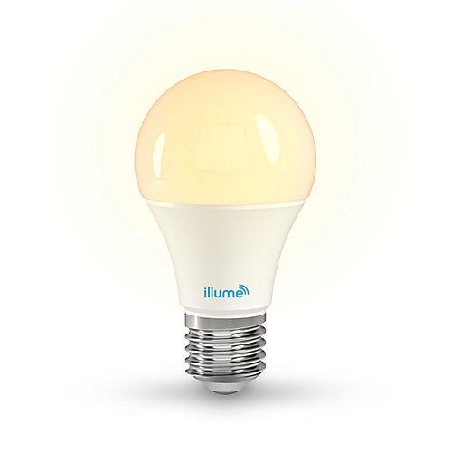 Ampoule intelligente à DEL Multicolore et blancs purs A-19 8W RGB+W 750 Lumens