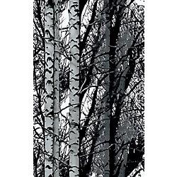 D-C-Fix 334-0028 Home Decor Premium Static Cling Window Film 17-inch x 59-inch Birch Woods