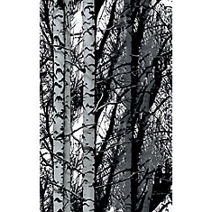 334-0028 Home Décor Premium Static Cling Window Film 17-inch x 59-inch Birch Woods - 1 Pack