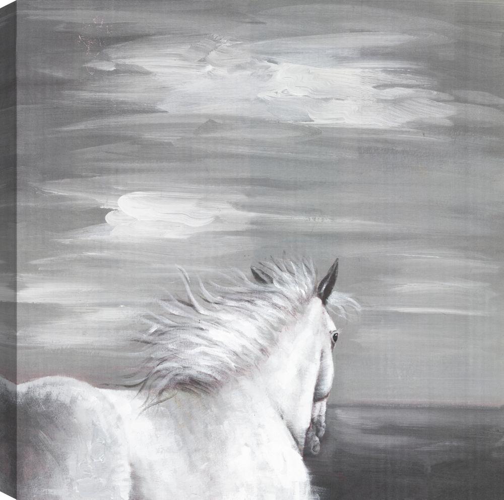 Horse Ride, Animal Art, Canvas Print Wall Art