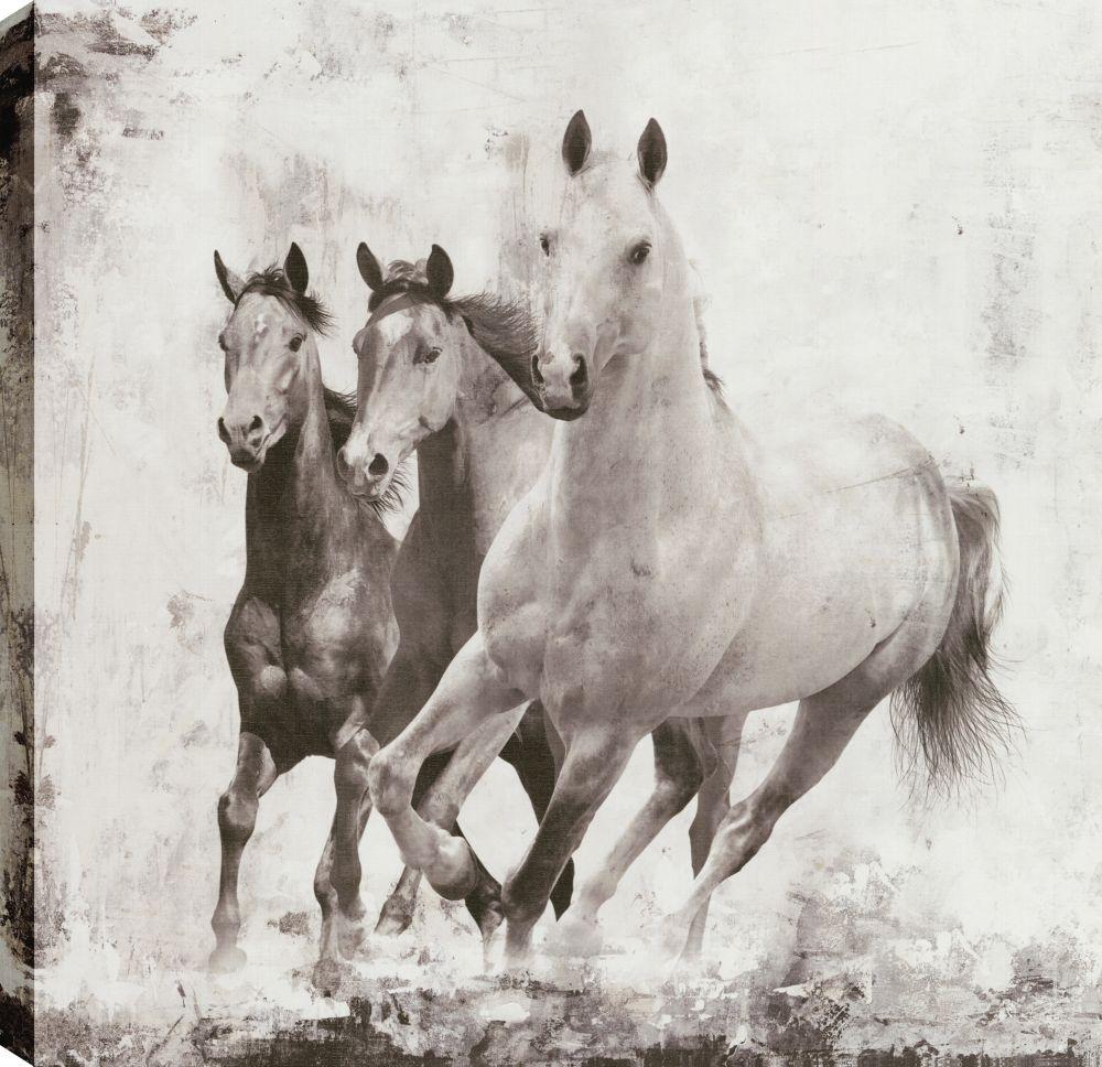 wild horses wall art amp canvas prints wild horses - 1000×968