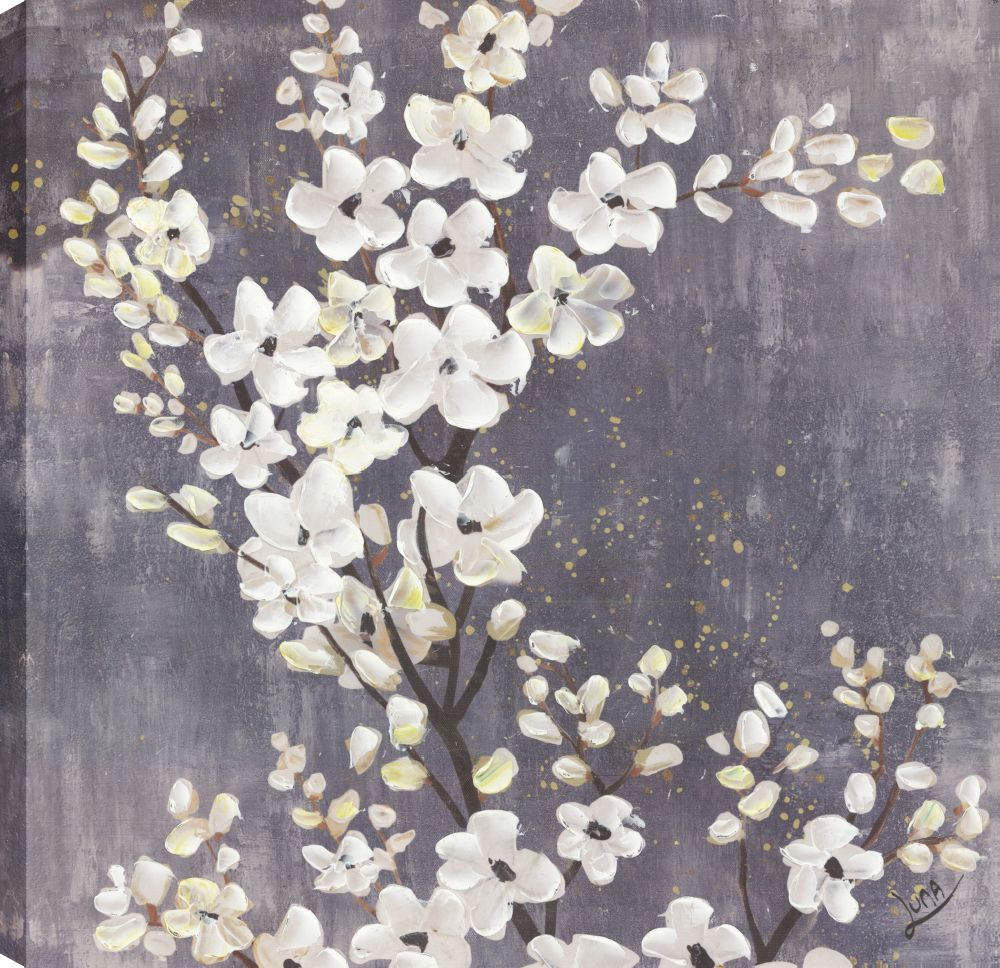 Art Maison Canada White Blossoms II, Floral Art, Canvas Print Wall Art