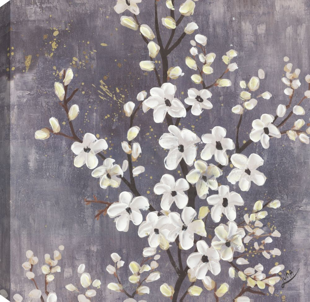 White Blossoms III, Floral Art, Canvas Print Wall Art