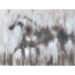 Art Maison Canada Black Beauty III, Animal Art, Canvas Print Wall Art