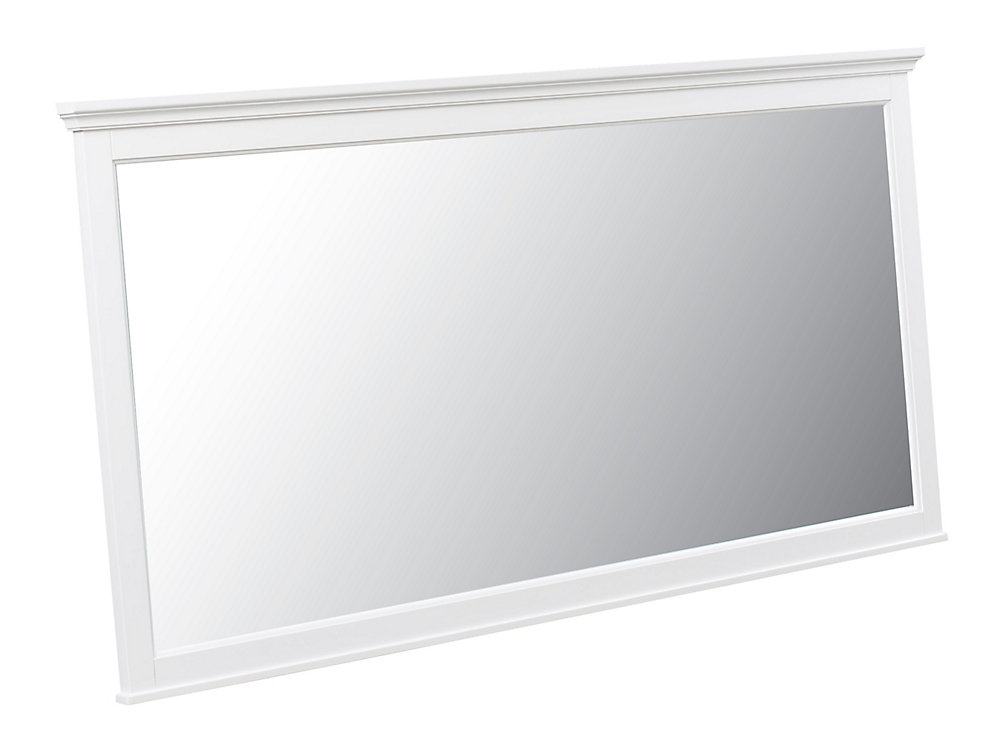 Ashburn 60 inch x 31 inch Single Framed Mirror in White