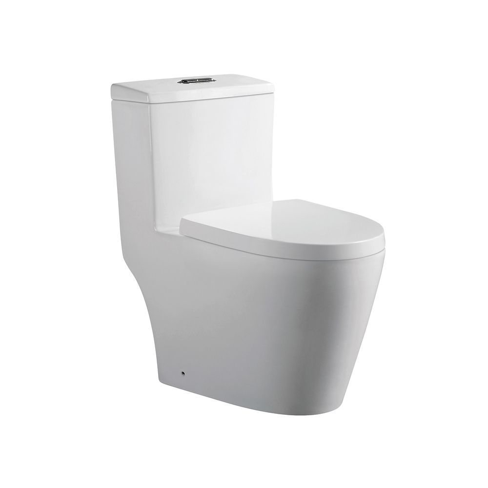 One Piece Toilets   The Home Depot Canada