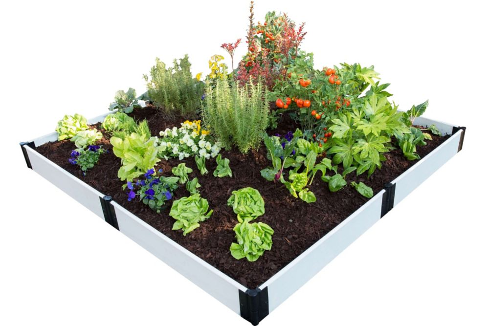 Frame It All Classic White Raised Garden Bed 8 ft. x 8 ft. x 8 inch  1 inch profile