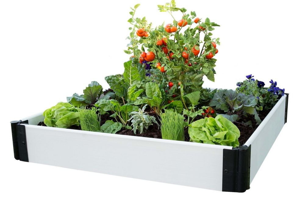 Frame It All Classic White Raised Garden Bed 4 ft. x 4 ft. x 8 inch  1 inch profile