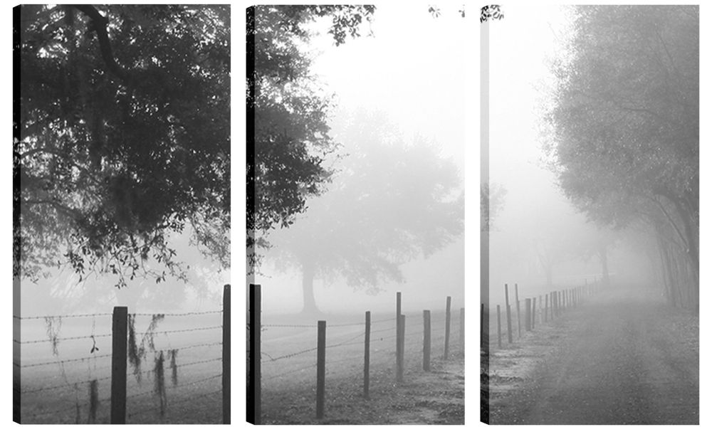 Art Maison Canada 24X12 Landscape Photography Foggy Woods Canvas Wall Art Ready to Hang, Set of 3