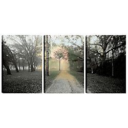 Art Maison Canada 18X12 Landscape Photography the Path II Canvas Wall Art, Ready to Hang, (Set of 3)