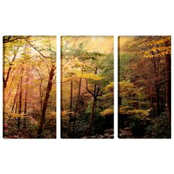 Art Maison Canada 24X12 Landscape Photography Rainbow Trees Canvas Wall Art Ready to Hang, (Set of 3)
