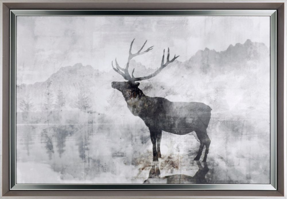 Art Maison Canada Deer Shadow, Animal Art, Print on Paper, Laminated