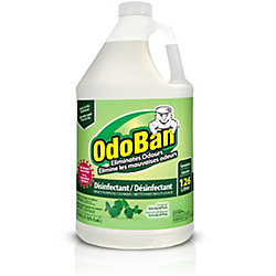 OdoBan Concentrated Disinfectant and Odor Eliminator Eucalyptus 3.79l