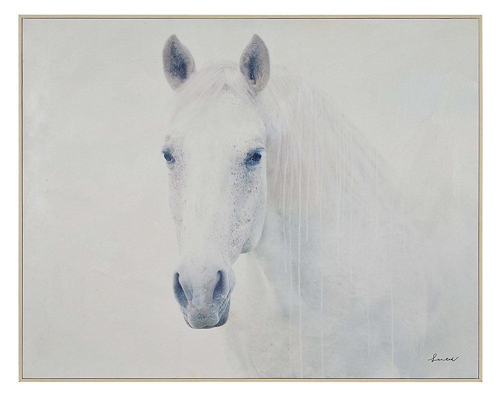 4b28ab361471 40-inch x 50-inch Barnum by Lola Framed Printee Canvas Wall Art