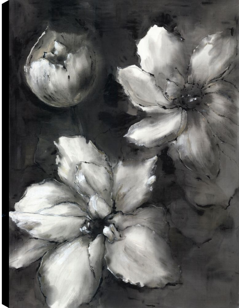 Art Maison Canada Black and White Florals II, Printed Canvas Unframed