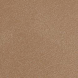 G-Floor Levant 7.5 ft. x 17 ft. Sandstone Vinyl Universal Flooring