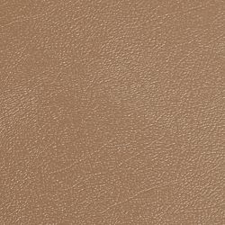 G-Floor Revêtement protecteur larmé de qualité commerciale,  Levant, 8.5 x 22 pi, grès