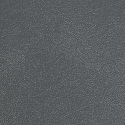 G-Floor Revêtement protecteur larmé de qualité commerciale,  Levant, 10 x 24 pi, gris