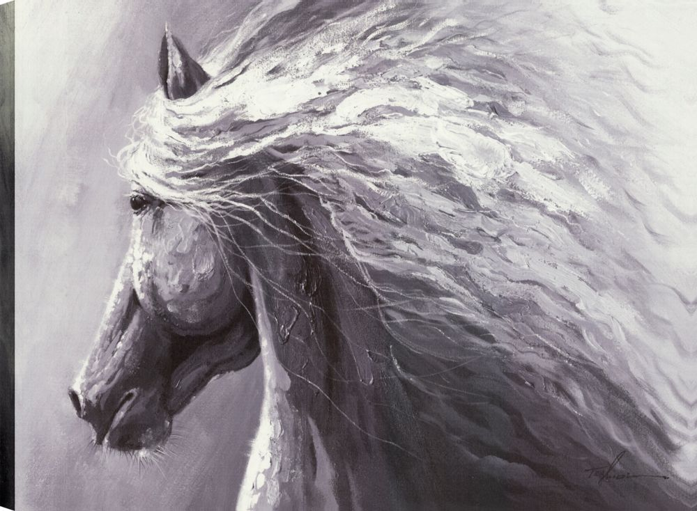 Horse Profile, Animal Art, Canvas Print Wall Art Décor 30X40 Ready to hang