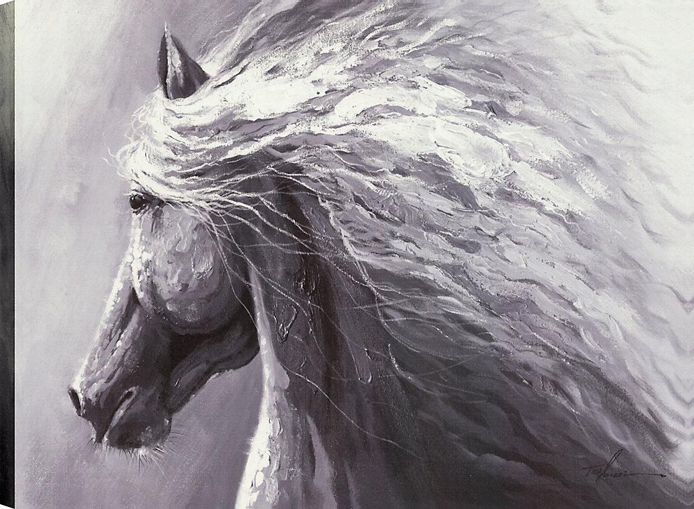 Horse Profile, Animal Art, Canvas Print Wall Art Décor 30X40 Ready to hang