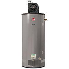 Chauffe-eau commercial Rheem au propane à évacuation forcée (PV) 75 USG