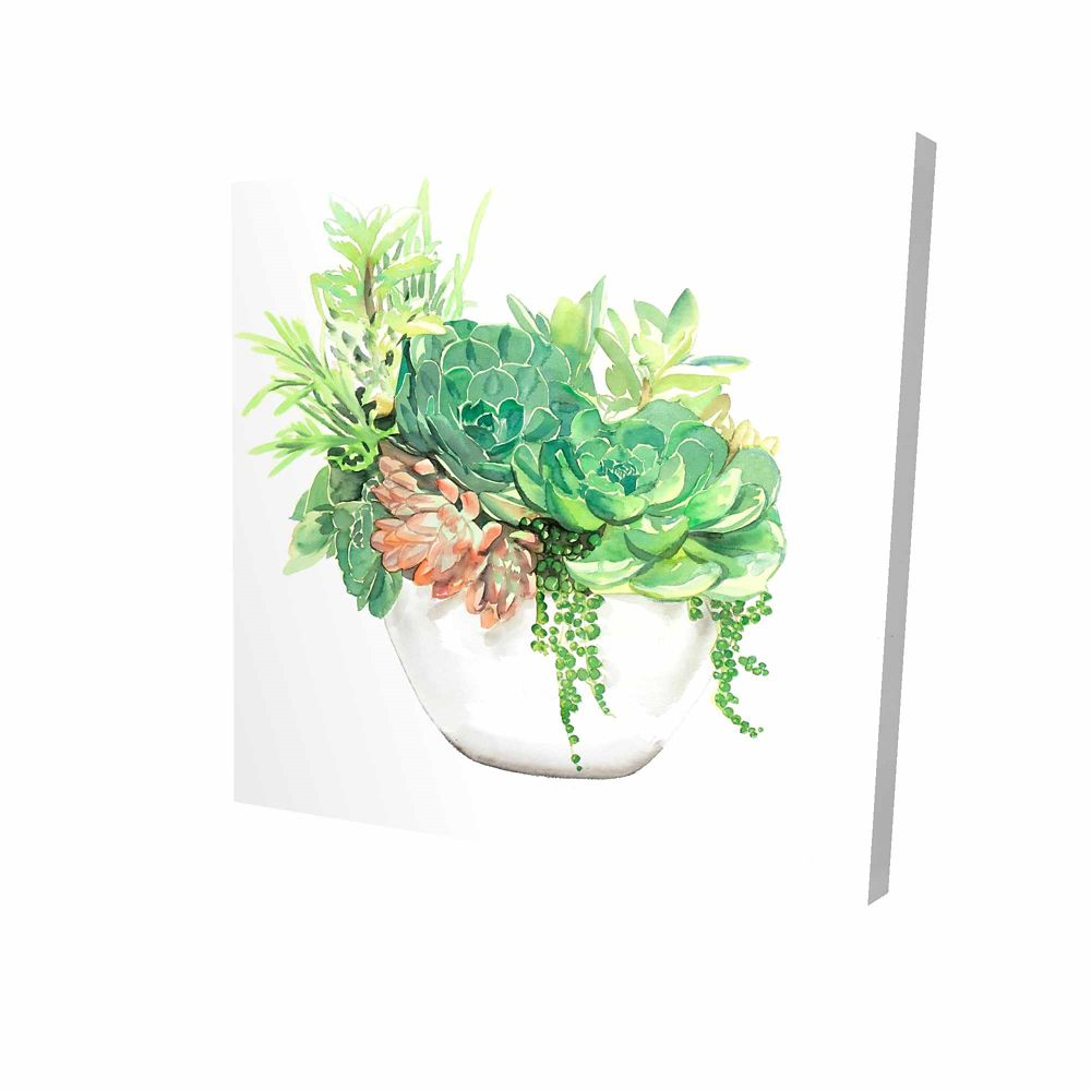 BEGIN EDITION INTERNATIONAL INC. Succulent Assortment In A Pot Printed On Canvas Wrapped On Wood, 36-inch x 36-inch