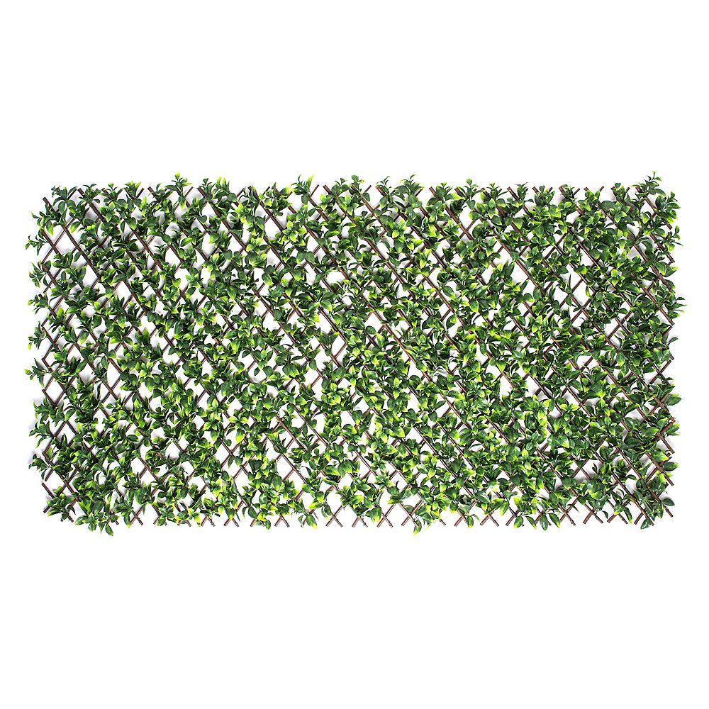 Priva Hedge Gardenia Leaf Expandable Willow Trellis